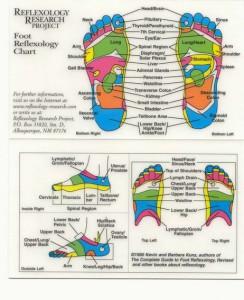 Reflexology - Foot Chart